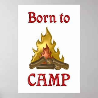 Llevado acampar póster