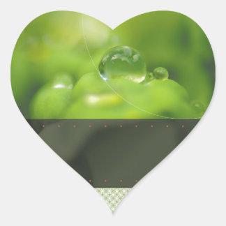 Llevar la buena fruta pegatina en forma de corazón