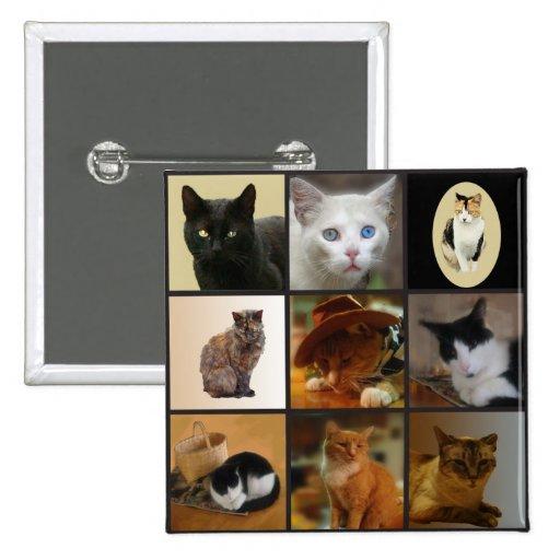Lleve su gato el día del trabajo pin cuadrada 5 cm