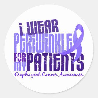 Llevo al cáncer del esófago de los pacientes 6,4 pegatina redonda