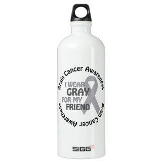 Llevo el gris para mi cáncer de cerebro del amigo