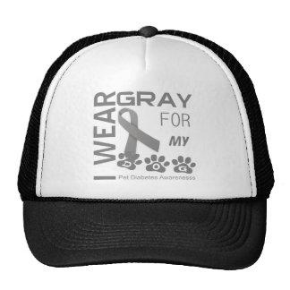 Llevo el gris para mi conciencia Appa de la diabet Gorros