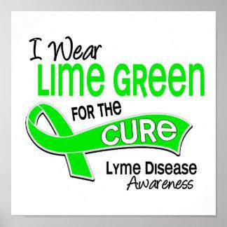 Llevo la enfermedad de Lyme de la curación de la v Poster