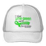 Llevo la enfermedad de Lyme de la mamá de la verde Gorros Bordados