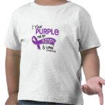 Llevo la púrpura para mi lupus de la mamá 42 camiseta