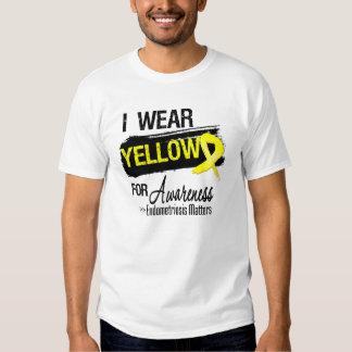 Llevo materias amarillas de la conciencia de la playera