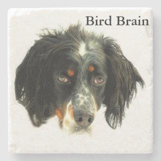 Llewellyn Setter Bird Brain Stone Coaster