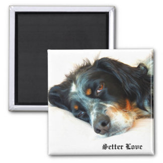 Llewellyn Setter Love 2 Inch Square Magnet
