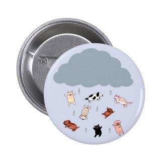 Lloviendo los gatos perros pin