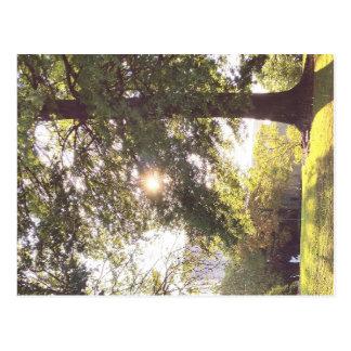 Lloviendo mientras que el sol brilla, una postal