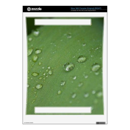 Lluvia de la mañana consola xbox 360 calcomanía