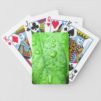 Lluvia de primavera cartas de juego