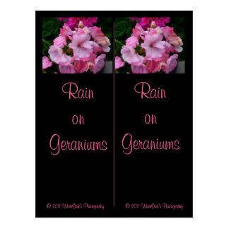 Lluvia en la postal de las señales de los geranios