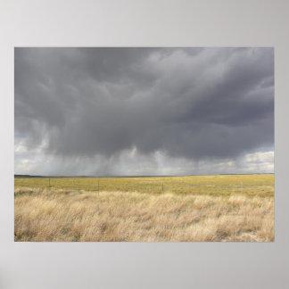 Lluvia gris en campo de oro posters