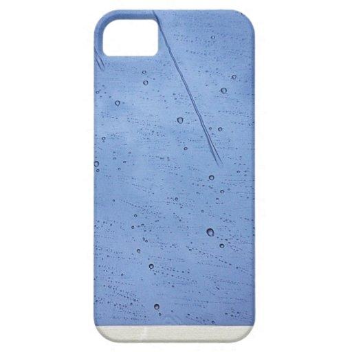 Lluvia iPhone 5 Fundas