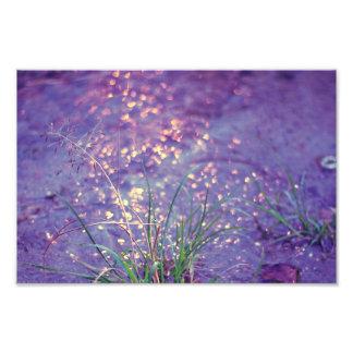 Lluvia púrpura brillante arte fotográfico
