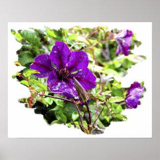 Lluvia púrpura poster