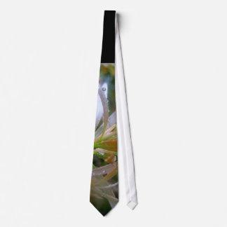 Lluvia que brilla corbata