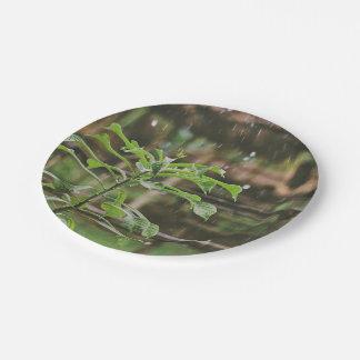 Lluvia que vierte sobre las plantas plato de papel de 7 pulgadas