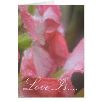 Lluvia rosada tarjeta de felicitación