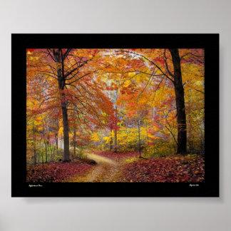 Lluvia suave del otoño póster