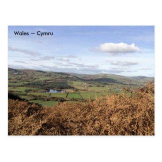 Llyngwyn Lake, near Rhayader, Wales Postcard