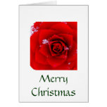 Lo A Rose E're Blooming card (Christmas)