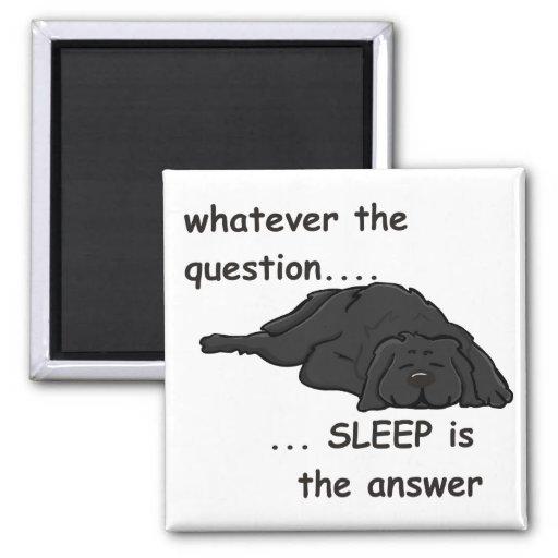 lo que la pregunta… imanes