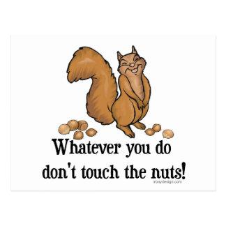 ¡Lo que usted lo hace, no toque las nueces! Postal