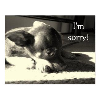 ¡Lo siento! Postal