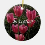 ¡Lo suben! Ornaments Para Arbol De Navidad