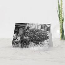 Load of Xmas Trees, 1910 Holiday Card