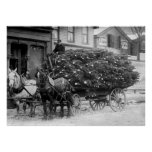 Load of Xmas Trees, 1910 Poster