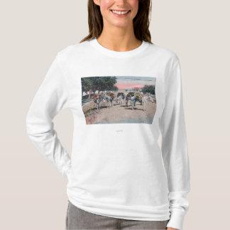 Loaded Donkeys on the StreetLas Vegas, NM T-Shirt