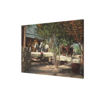 Loading Fruit at Longview Ranch Canvas Print