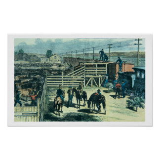 Loading Texas cattle onto a train at Abilene railh Poster
