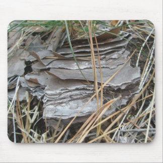 Lob Lolly Pine Bark Mousepad