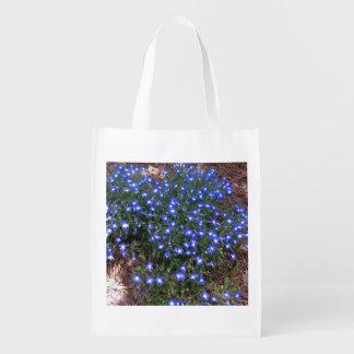 Lobelia observado azul del palacio bolsa para la compra