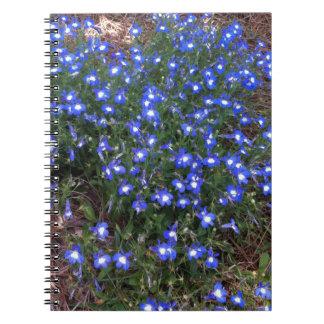 Lobelia observado azul del palacio spiral notebook