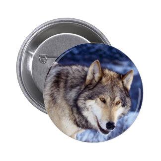 Lobo 2 del invierno pin redondo 5 cm