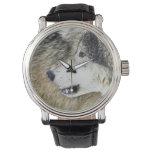 Lobo 2 relojes de mano