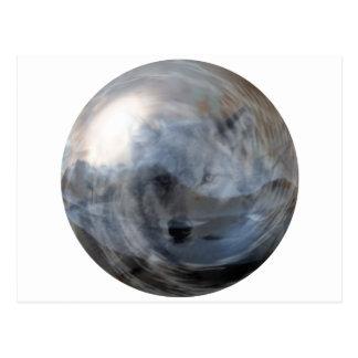 Lobo ahumado en bola de cristal postal