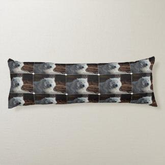 Lobo ártico adorable cojin cama