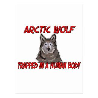 Lobo ártico atrapado en un cuerpo humano tarjeta postal