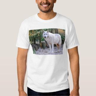 Lobo ártico en el bosque playeras