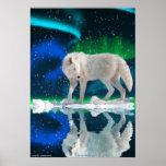 Lobo ártico, poster del arte de la fauna de la aur