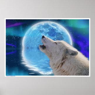 Lobo ártico que grita en el arte de la fauna de la póster