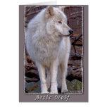 Lobo ártico tarjeta