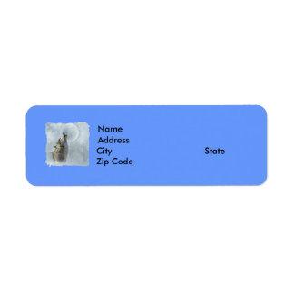 Lobo azul etiquetas de remite