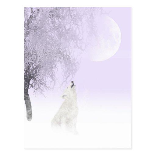 Lobo blanco del grito postales